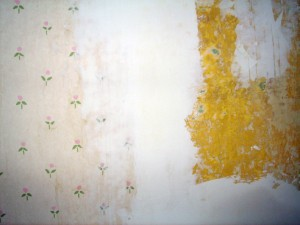 drywall mud over edges of wallpaper